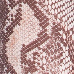 detalhe tecido blusa ronsamaria animal print cobra